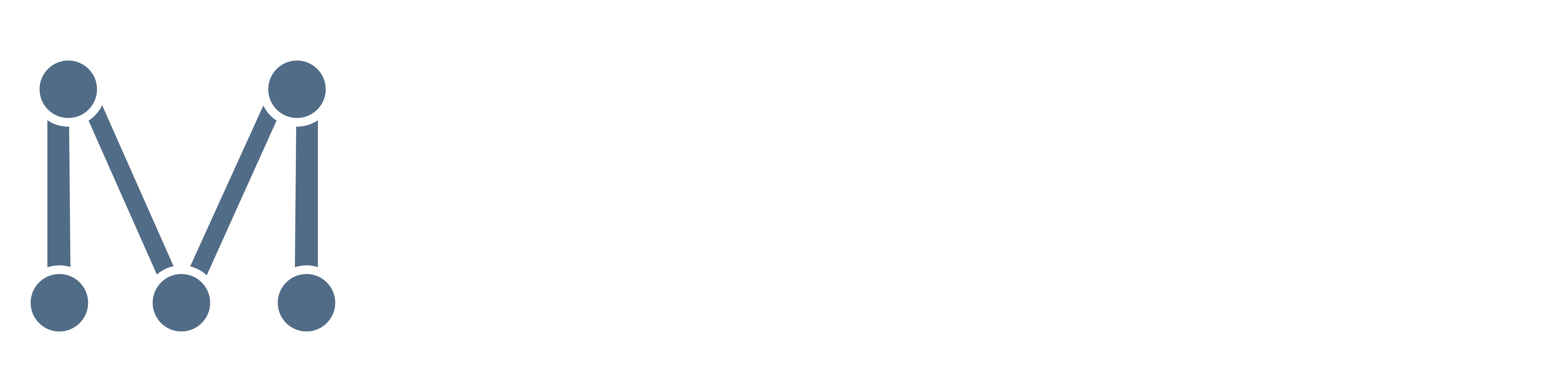 MITKOV SYSTEMS GmbH
